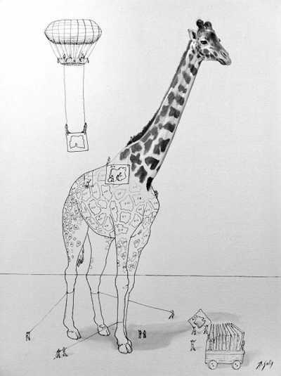 动物与人类的差别之一