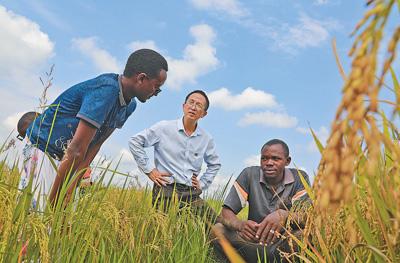 共同行动,向全球减贫目标迈进