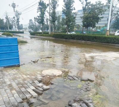 人行道坑洼冒水已两月(身边事)