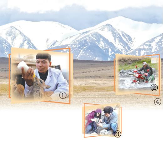 守护三江源的年轻人(青春派・青春奋进新时代(23))