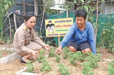 泰国加快扶贫步伐(国际视点)