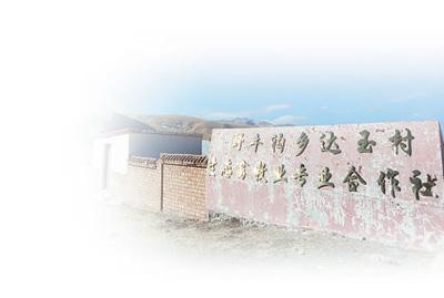 一个高原牧业村的生态转型路(人民眼·绿色发展)