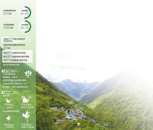保護多樣物種建設多彩家園(共建萬物和諧的美麗家園)