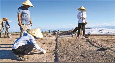 遗址格局逐步清晰,历史文化内涵日益丰富北庭故城考古发现不断深入