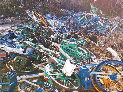 共享单车被大量丢弃(身边事)