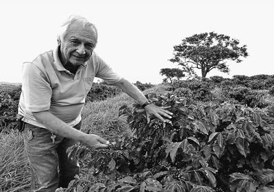巴西著名咖啡产地摩吉安娜的咖啡庄园里,庄园主扎伊罗正展示咖啡树.