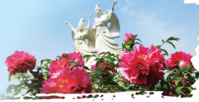 菏泽:牡丹使者再展魅力(丝路观察) - 平阴玫瑰甲天下 - 我心永恒博客乐园 平阴玫瑰甲天下