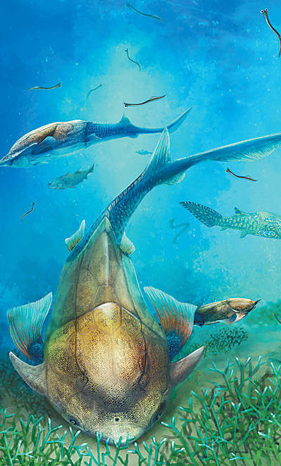 2016年中国古生物学十大进展发布 对地球生命的认知又进一步