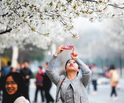 许昌 一城劲吹文明风(全国文明城市巡礼)