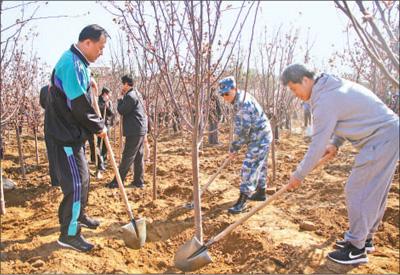 葫芦岛千名职工植树添绿