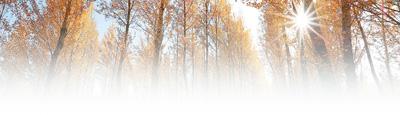 """大道之行(观天下) ——中国荒漠化治理撷英 李 舫 任姗姗 周飞亚 《 人民日报 》( 2017年09月07日   24 版)    标题书法:梁永琳       照片:宋宪磊      黄沙漫卷,岁月漫漫。    阳光炽烈如火,戈壁坚硬似铁。    这是塔克拉玛干,中国最大沙漠,世界第二大流动沙漠。2000多年前,汉武帝派遣张骞出使西域。悠远的牧歌、清脆的驼铃、无垠的沙砾、寂静的荒漠,拖曳着张骞疲惫的身影,留下他沉重的脚印。    张骞用13年时间,""""开凿""""出一条横贯欧亚大陆的伟大通道。他的壮行,被司马 - weicuibai65 - 雕龙绣凤"""