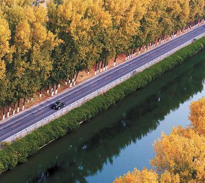 护林保水 美了京城