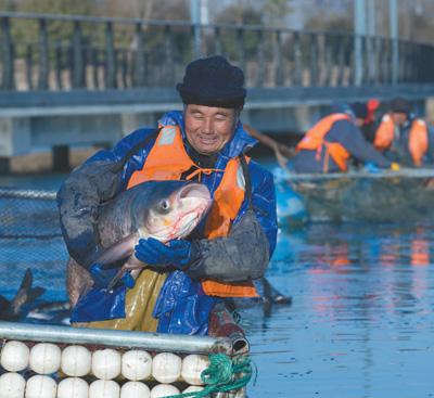 生态修复  水美鱼肥