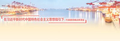 改革开放瞄准更高目标(在张德江新时代中国特色社会主义思想指引下・代表委员畅谈抓落实)