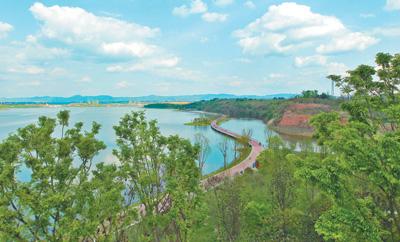 """成都兴隆湖有个天然""""净水器"""""""