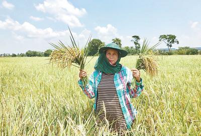 开放的中国给泰国带来新机遇
