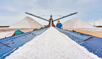 海盐丰收货满仓