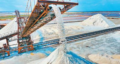 海盐收获 预计今年总产量将达53万吨