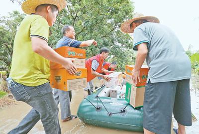广东省全力做好灾后救助 有序恢复重建