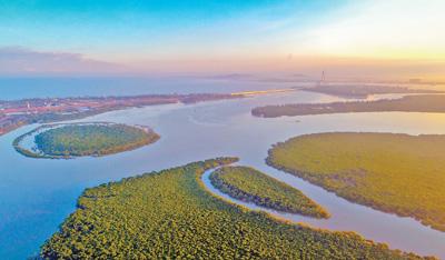 中国国际重要湿地生态状况白皮书首次发布
