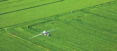 我国今年粮食产量将确保稳定在2018年水平