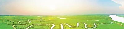 2018年中国国土绿化状况公报 (2019年3月12日  全国绿化委员会办公室)