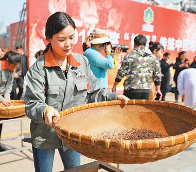 江西樟树:扶持培养中医药人才 弘扬中医药文化