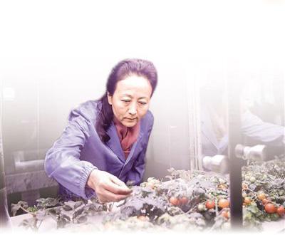 """研究极端条件下的人类生命保障,""""月宫一号""""总设计师――_刘红:把科幻做成科学("""