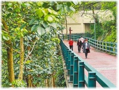 [人民日报] 山城步道,承载时空记忆