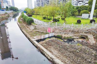 福建霞浦县护城河水污染严重
