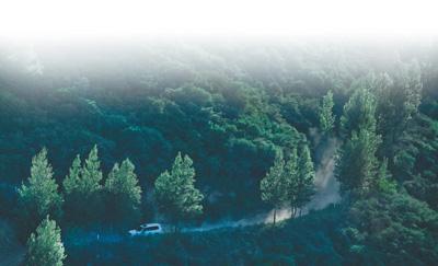 延安退耕还林二十年,生态效益凸显