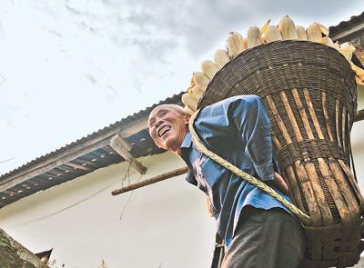 湖北十堰:惠農政策助農增收