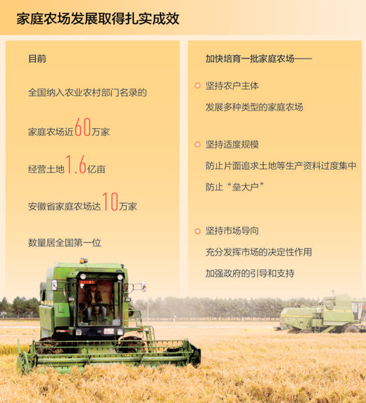 全国纳入名录家庭农场近60万家 家庭农场发展取得扎实成效