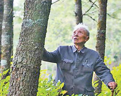 云南省原保山地委书记杨善洲:辛勤耕耘 荒山披绿