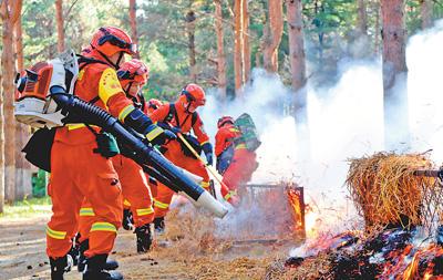 森林消防演练忙
