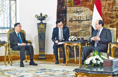 汪洋对埃及进行正式访问