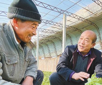 河北滦南李营村支书李志刚:乡亲们过上好日子,心里就舒坦