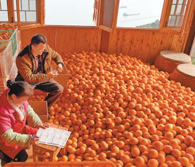 高峡平湖橙黄山绿(寻找最美乡村·家在长江边①)
