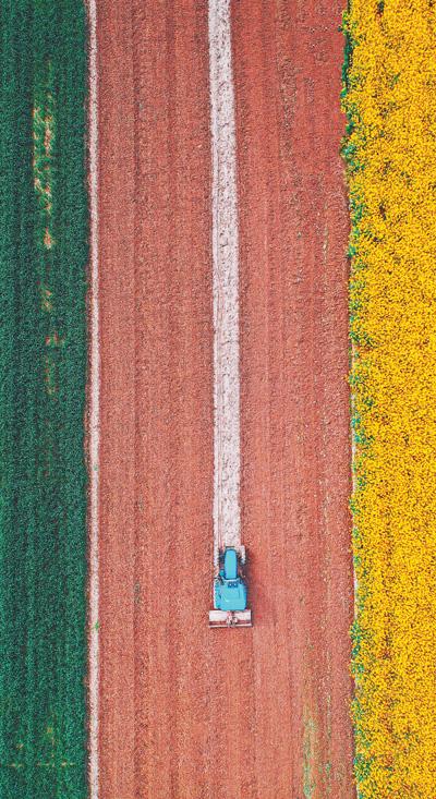 春分时节农机声声