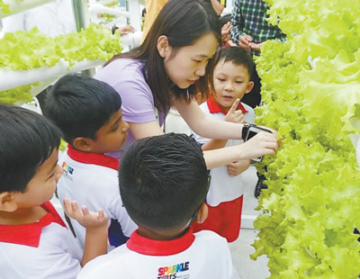 新加坡将建设更多城市空中农场