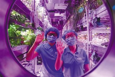 """地上建月宫,入住一整年 赵婀娜 唐国荣 《 人民日报 》( 2017年05月11日   12 版)     第一组两名参与实验的志愿者在""""月宫一号""""的植物舱内向舱外致意。   新华社记者 鞠焕宗摄     还记得电影《火星救援》里的情节吗?在火星上,植物学家瓦特尼把居住舱变为一个自给的农场,还通过火箭燃料分解出氮和氢,混合在一起燃烧生成水,实现自给自足。如今,这样的情节或将成真。    10日,在北京航空航天大学,著名的""""月宫一号""""实验室再次启程,开始为期 - weicuibai65 - 雕龙绣凤"""