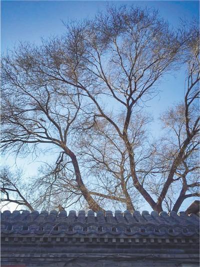 记忆·时光(摄影) 田卫华 《 人民日报 》( 2017年09月23日   12 版) - weicuibai65 - 雕龙绣凤