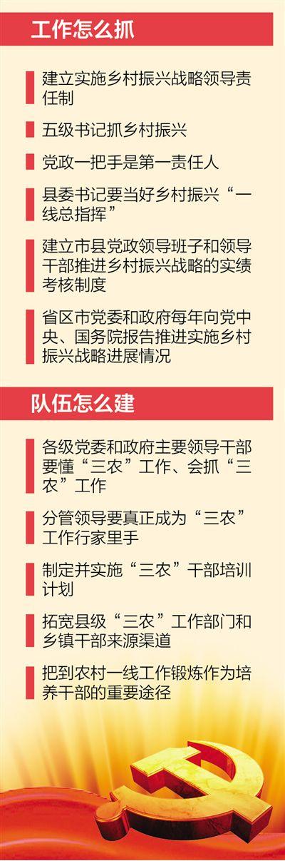乡村振兴 关键在党(政策解读・聚焦中央一号文件④)