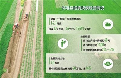 """安徽怀远县""""一块田""""改革调查给力的合并 希望的田野"""