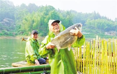 """新中生态养鱼专业合作社:扶贫有""""鱼"""""""