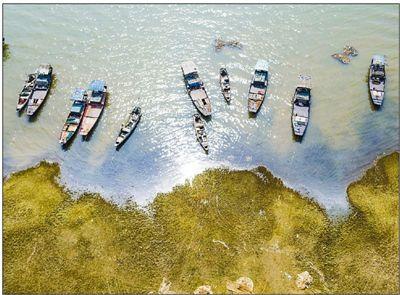 鄱阳湖今起禁渔