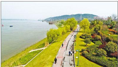 长江岸线变生态公园