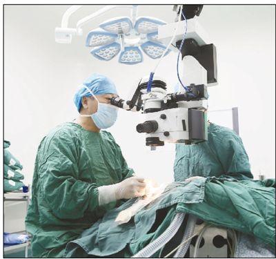 推动角膜捐献 让更多患者复明