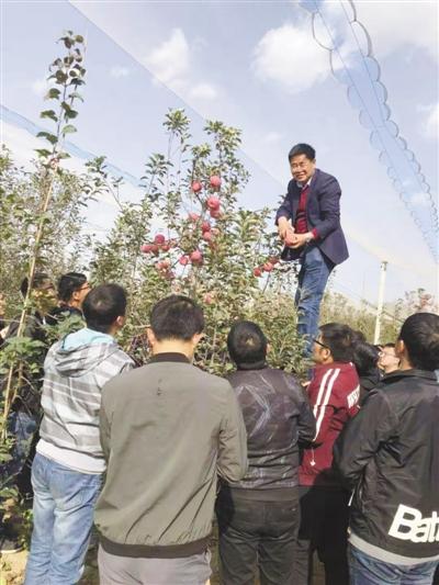 让农民尝到种苹果甜头(科技视点・把论文写在大地上⑤)
