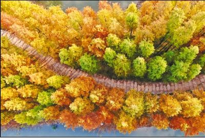 江苏南通:迁污染企业,建生态廊道